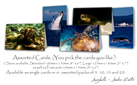 Jaxybelle Love Our Marine Life Cards