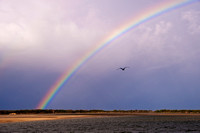 110630 Caloundra Golden Beach Rainbow 5