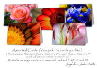 Jaxybelle Floral Cards